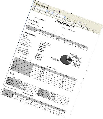 Generador de informes personalizables